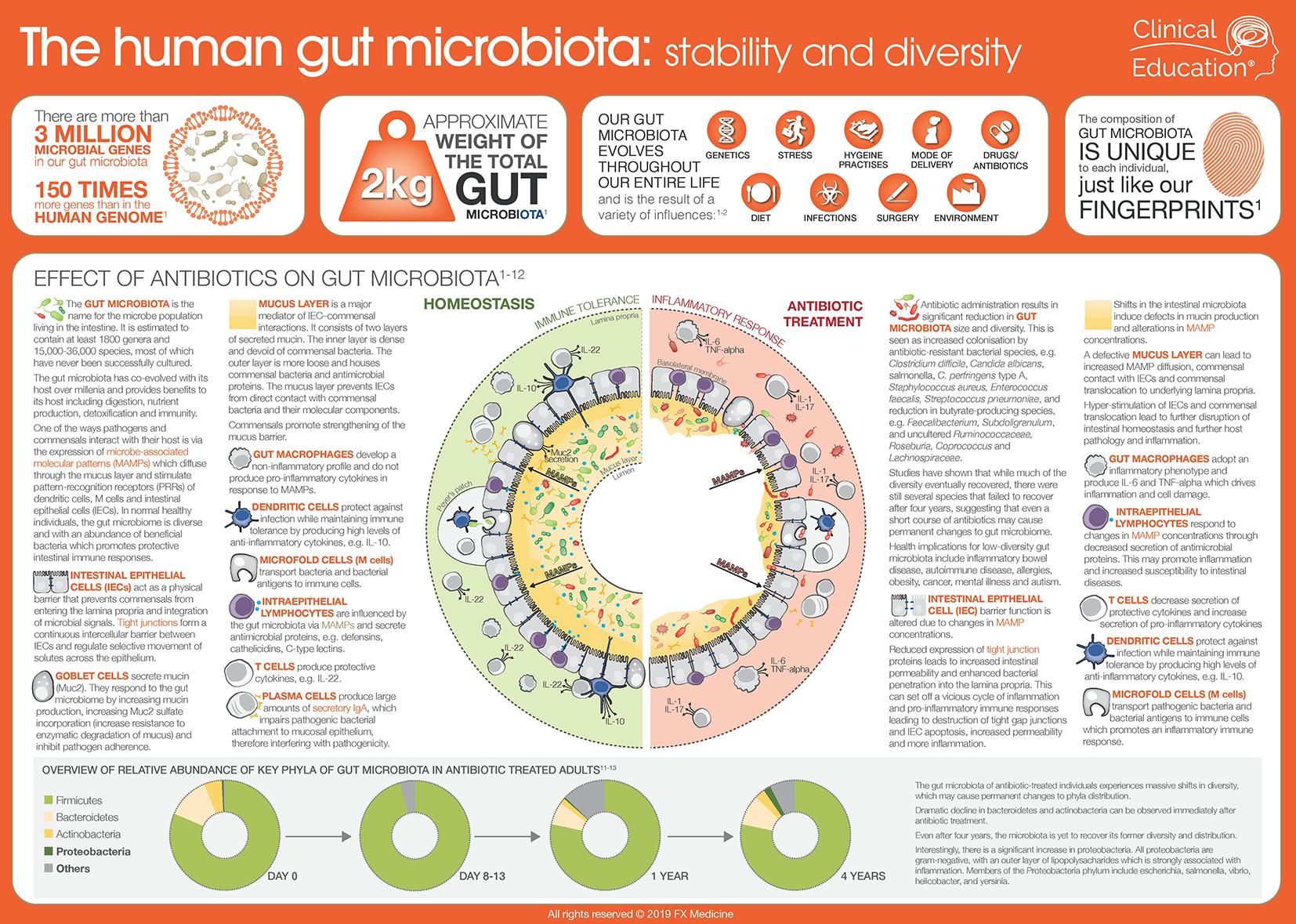006 Human Gut Microbiota WEB-page-001