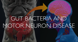 Gut-Bacteria-and-Motor-Neuron-Disease