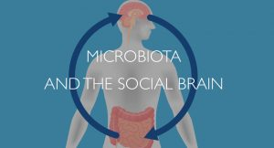 Microbiota and the social brain