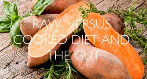 Raw vesrus cooked diet and the gut