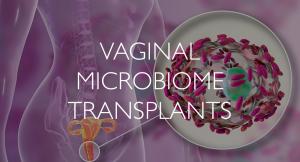 Vaginal-Microbiome-Transplants